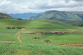 Rural settlement on foothills of the Drakensberg mountains, KwaZulu-Natal, South Africa