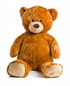 foto of teddy  - teddy bear on white background - JPG