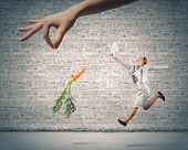picture of dangling a carrot  - Funny image of businesswoman chased with carrot - JPG