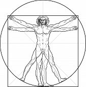 stock photo of leonardo da vinci  - The Vitruvian man - JPG