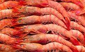 Deep Frozen Boiled Shrimps.