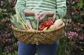 Closeup midsection of a woman holding vegetable basket outdoors