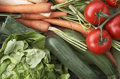 Detail shot of fresh vegetables