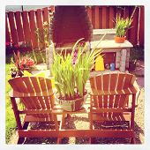 Two chairs with flower in summer - Instagram effect
