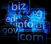 Biz Com Net Shows Websites Internet And Seo