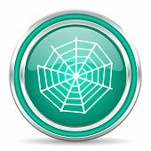 spider web green glossy web icon