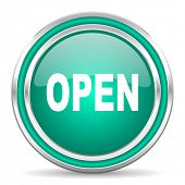 open green glossy web icon