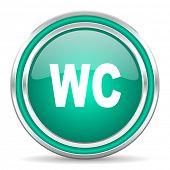 toilet green glossy web icon