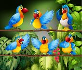 Illustration of many parrots in the jungle