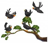 Illustration of many black  birds on a branch