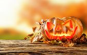 Concept of halloween pumpkin on wooden planks with blur background.