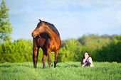 Young beautiful girl walking with a horse in the field