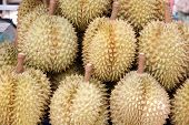 Durian Of Local Fruits In Thailand.