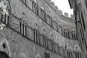 Buildings And Streets Of Siena