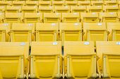 foto of grandstand  - The Empty Chair at Grandstand - JPG