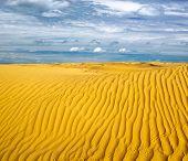 Desert landscape with sky