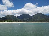 Hanalei Bay Surfer