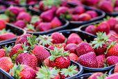 Baskets Of Fresh Strawberries In A Street Market