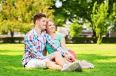 holidays, vacation, love and friendship concept - smiling couple sitting on grass in park