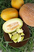 Slices of melon on brown plate on fresh grass background