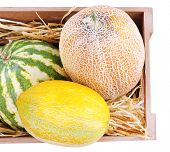 Melons and watermelons in wooden box isolated on white