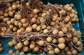 Fresh Longan Fruits On Basket For Sale