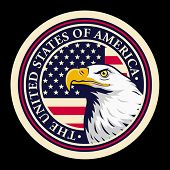 picture of eagles  - Stylized illustration of bald eagle head against USA flag background - JPG