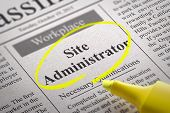 Site Administrator Vacancy in Newspaper.