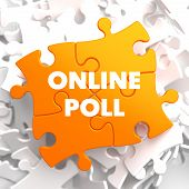 Online Poll on Orange Puzzle.