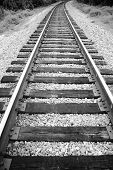 TrainTracks Black & White