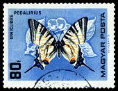 Vintage  Postage Stamp. Butterfly Iphiclides Podalirius.