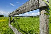 Old Wooden Fence On Nice Green Summer Pasture  Meadow