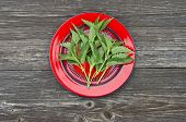 Fresh  Nettle Herb For Healthy Ecological Food In Red Plate