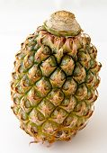 Small pineapple isolated