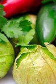 Chili Cilantro Tomatillo