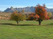 Southern Utah charm