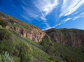 Gran Canaria, Caldera De Bandama After Winter Rains
