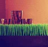 Close up detail view of a home wooden table with an elegant and decorative  vases toned with a retro vintage instagram filter effect