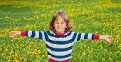 Child on the lawn with dandelions