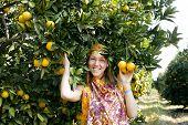 pretty islam woman in orange grove smiling