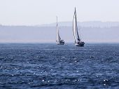 Two Sailboats on Deep Blue Water