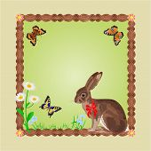 Easter Hare With Butterflies And Daisy Vector