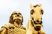 Golden Equestrian