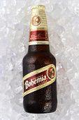 Bohemia Beer On Ice