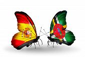 Two Butterflies With Flags On Wings As Symbol Of Relations Spain And Dominica