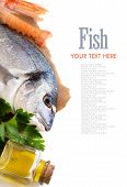 Fresh Dorado Fish, Olive Oil And Scampi