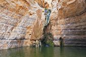 Canyon Ein Avdat in Israel. Thin jet waterfall form cold lake. Sandstone canyon walls form round bowl