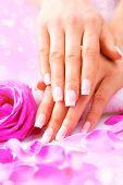 picture of manicure  - Manicure - JPG