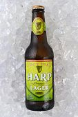 Harp Lager On Ice Vertical