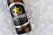 Sapporo Bottle On Ice Closeup